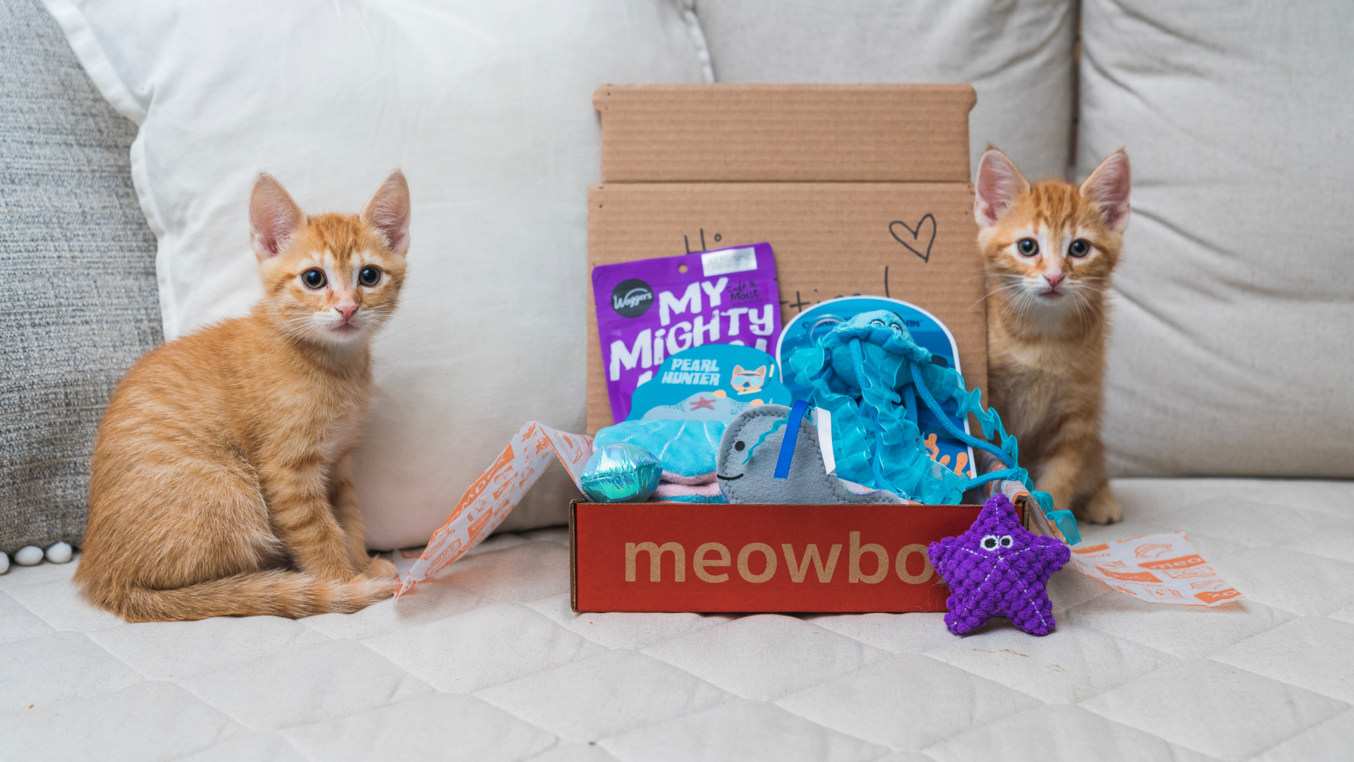 Meowbox A Monthly Cat Subscription Box Filled With Fun